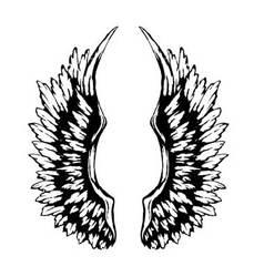 Heavy-wings vector