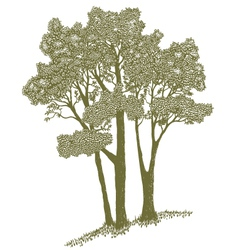 Woodcut trees vector