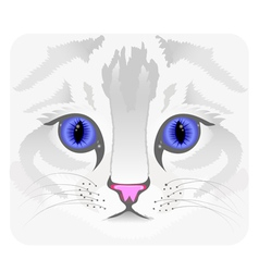 Cat face vector