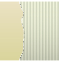 Beige torn paper on stripes side vector