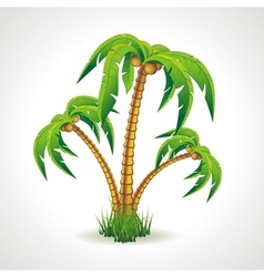 The palm trees vector