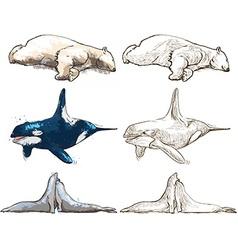 Polar animals - coloring book vector