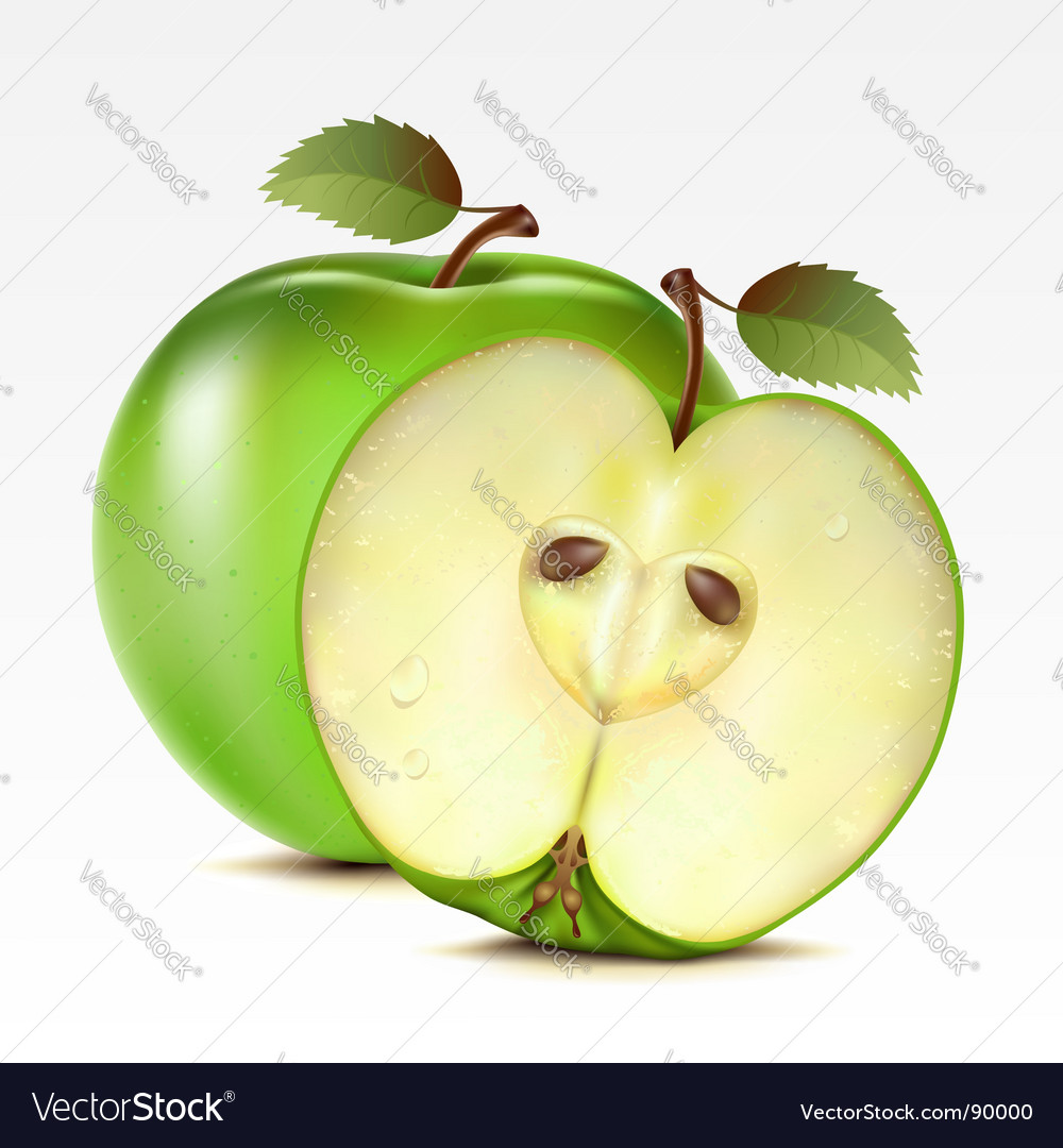 Apples vector   Price: 3 Credit (USD $3)