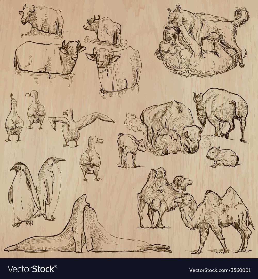 Animals around the world part 20 hand drawn pack vector   Price: 3 Credit (USD $3)