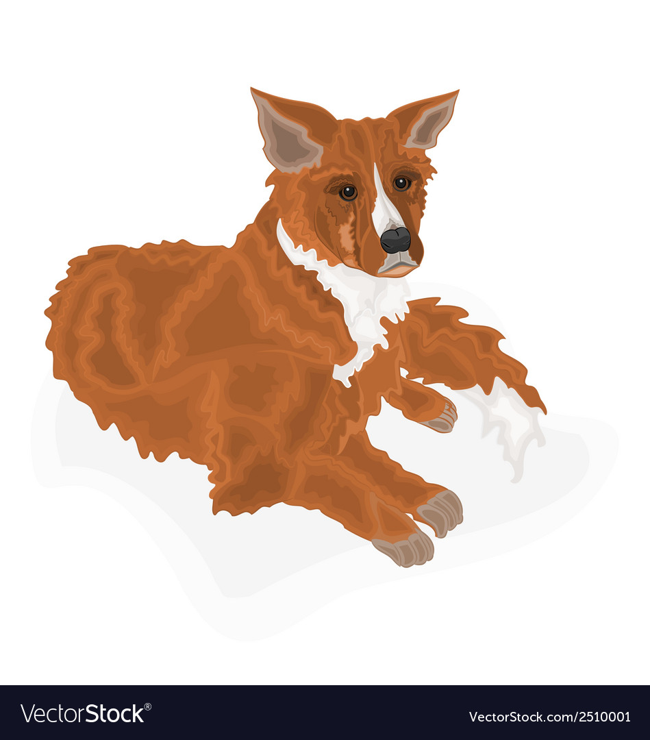 Lying-dog vector | Price: 1 Credit (USD $1)