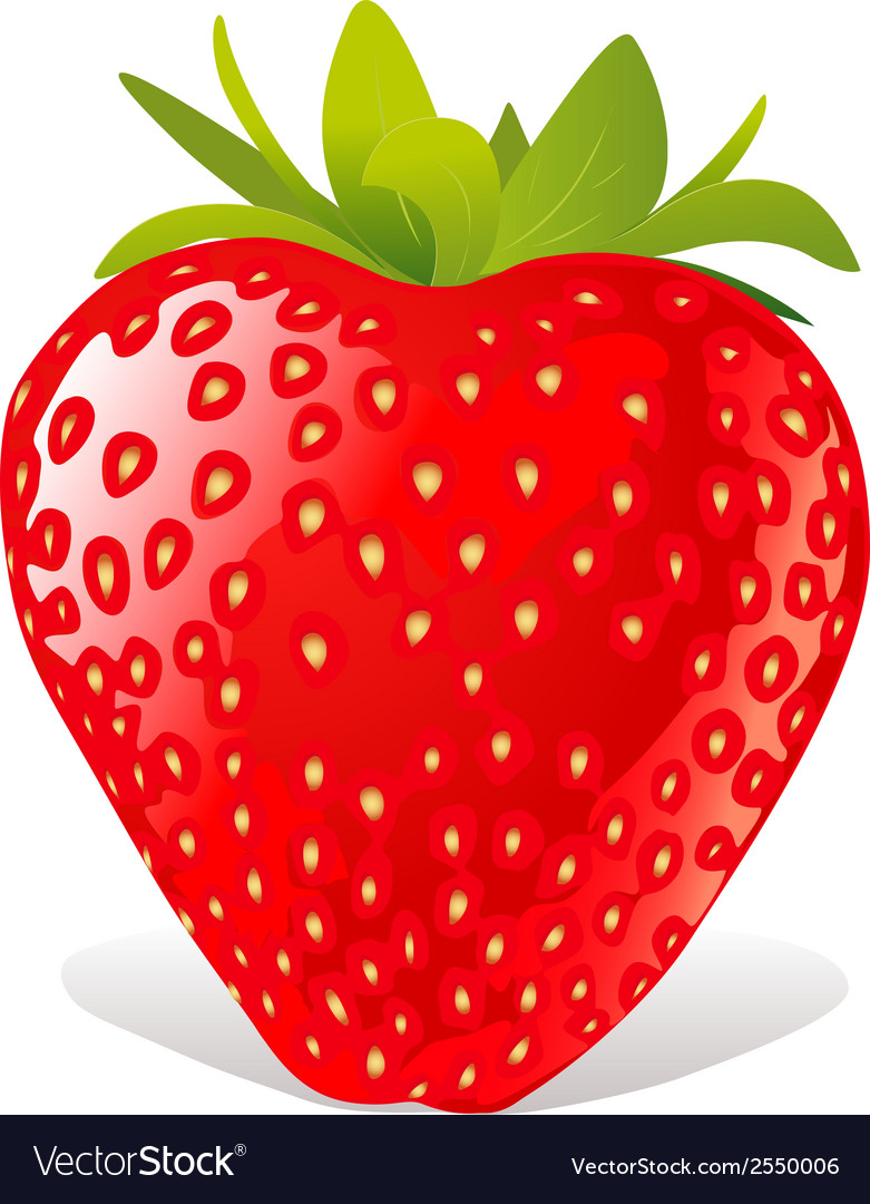 Strawberry vector | Price: 1 Credit (USD $1)