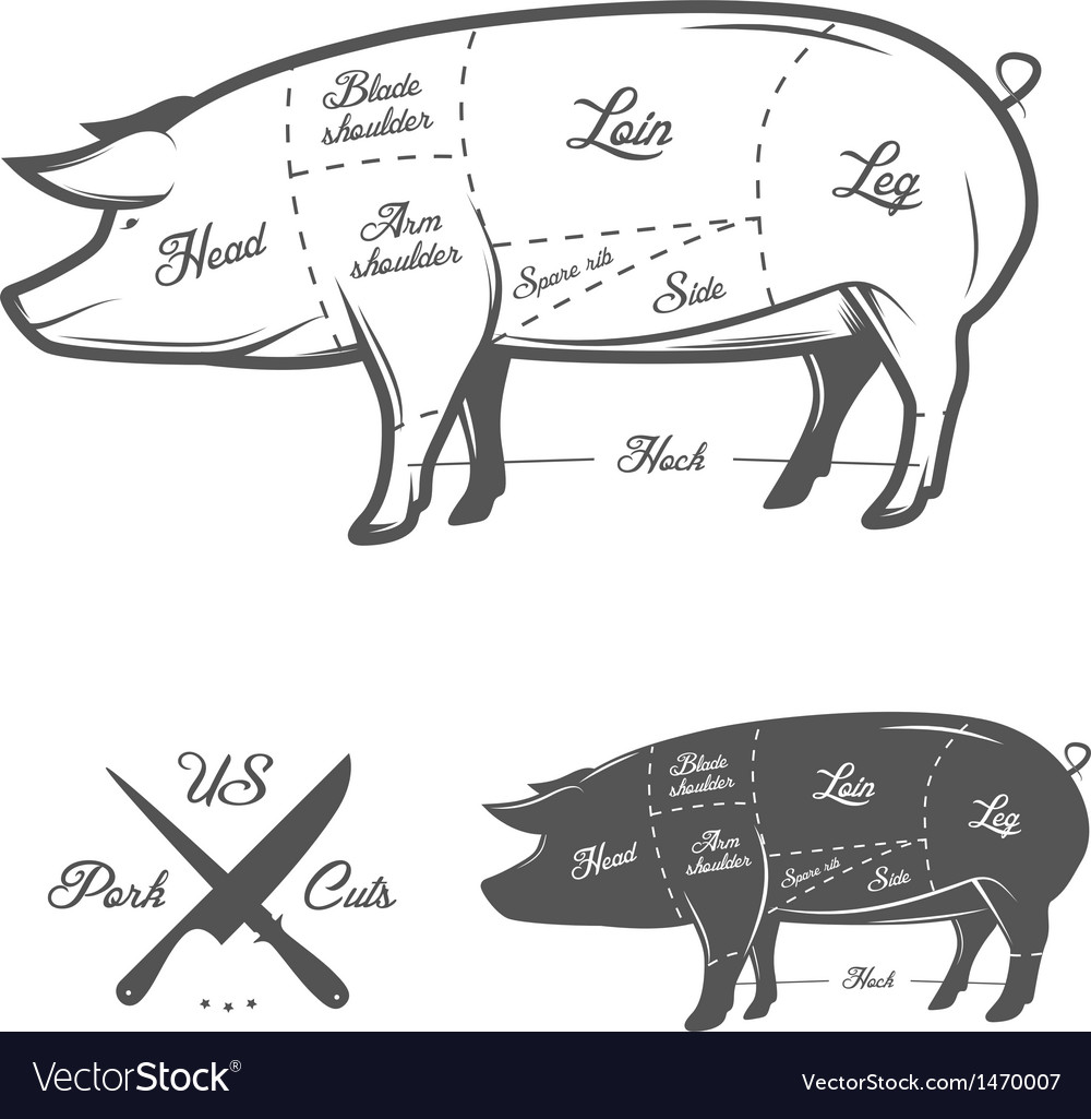American us cuts of pork vector | Price: 1 Credit (USD $1)