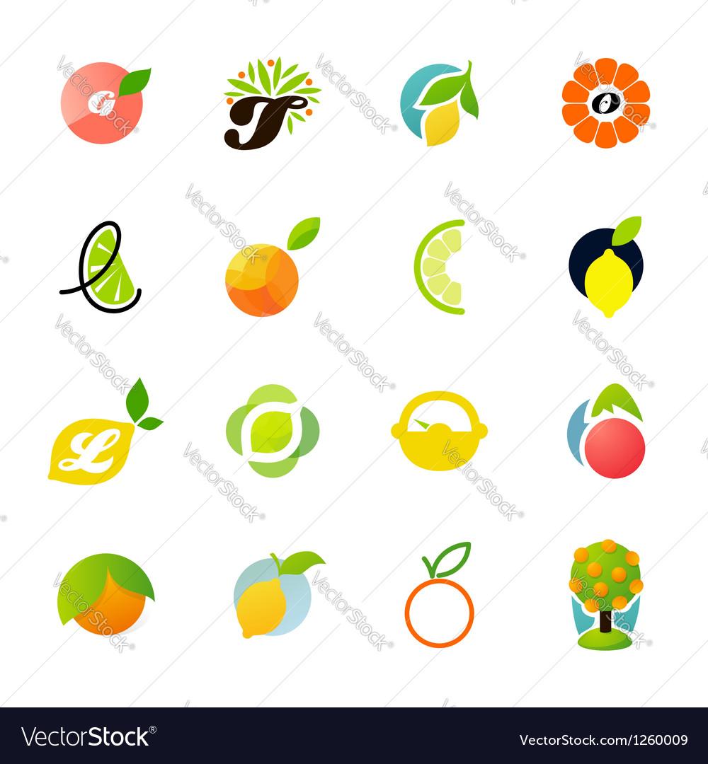 Citrus family - logo templates set vector | Price: 1 Credit (USD $1)