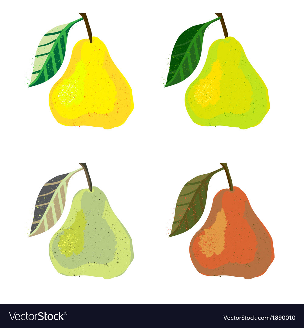 A pear fruits vector | Price: 1 Credit (USD $1)