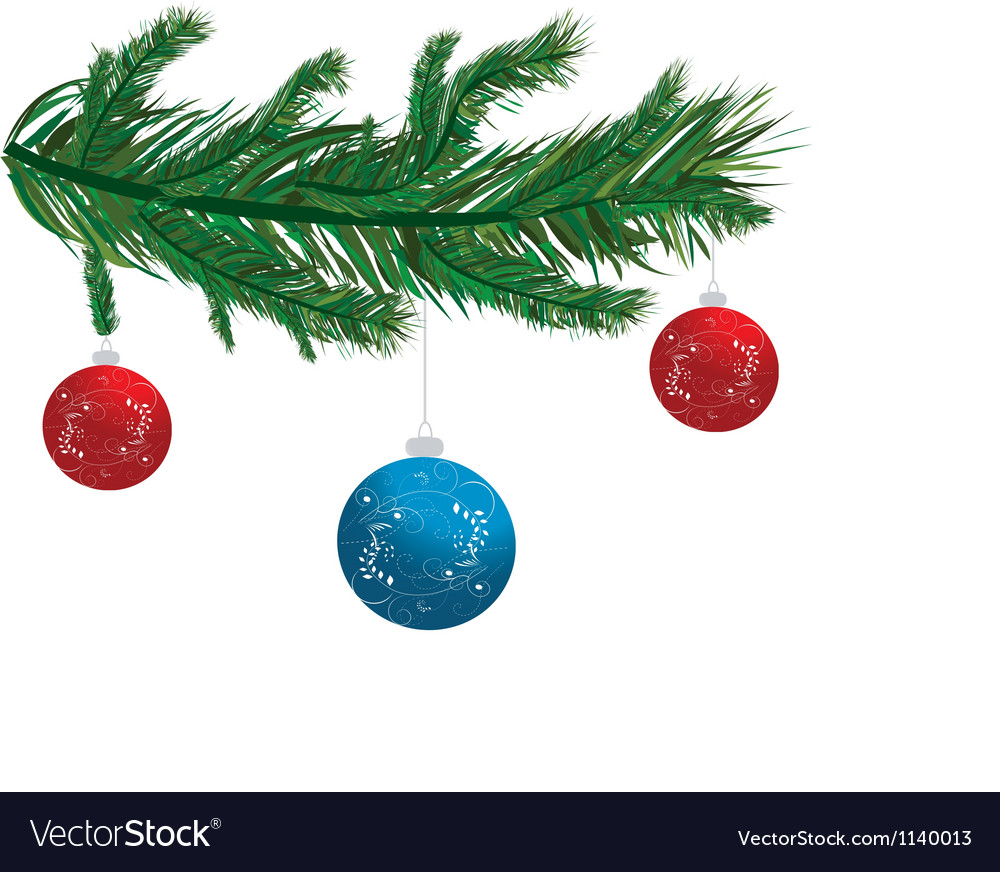Holly with baubles hanging vector