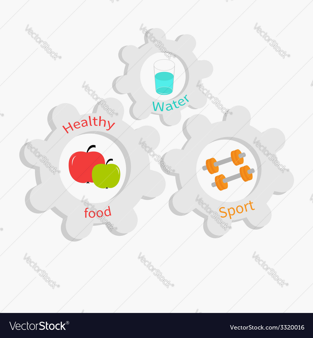 Cogwheel gear set with water apple dumbell vector | Price: 1 Credit (USD $1)