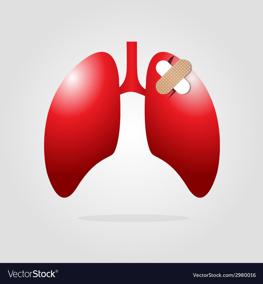 Lungs with plaster vector | Price: 1 Credit (USD $1)
