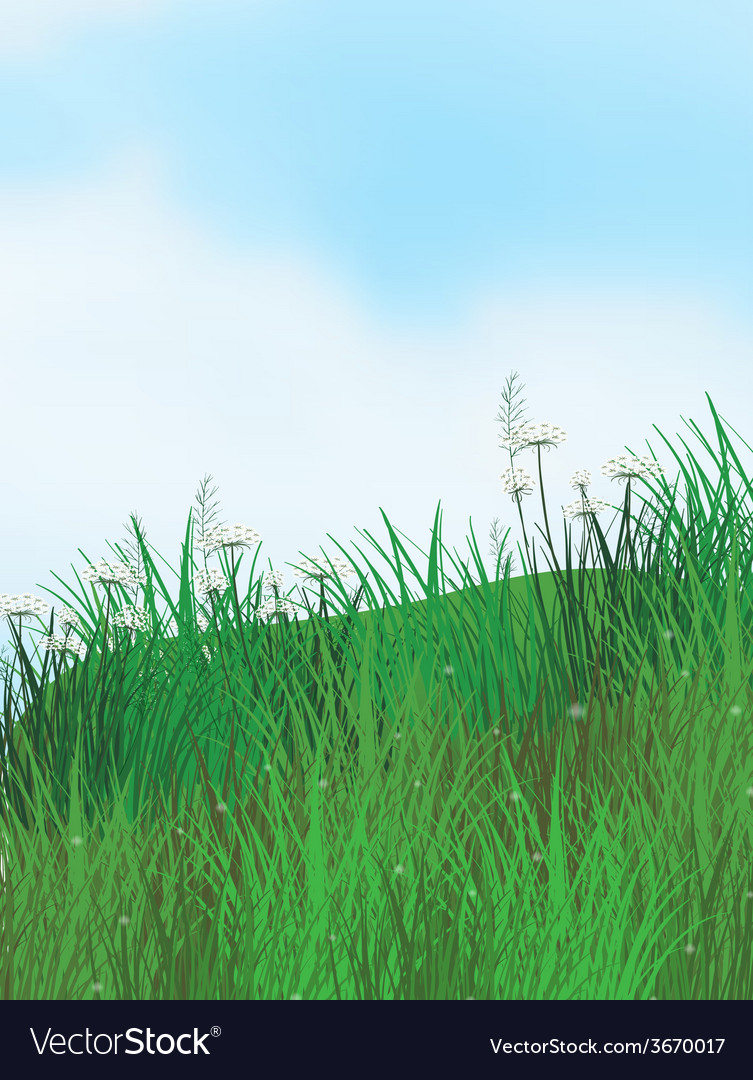 Grassland vector | Price: 1 Credit (USD $1)