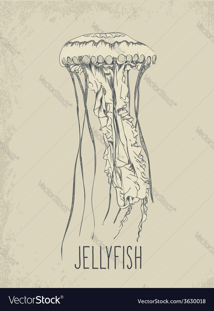 Hand drawn jellyfish vector | Price: 1 Credit (USD $1)