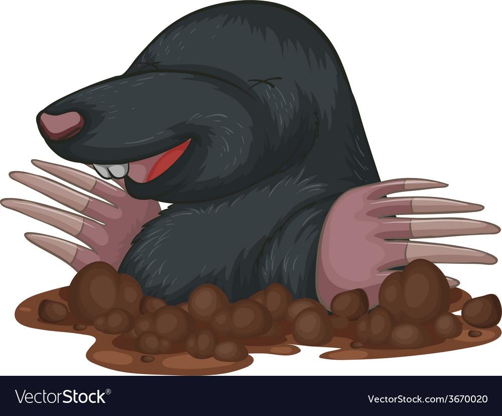 Mole vector | Price: 1 Credit (USD $1)