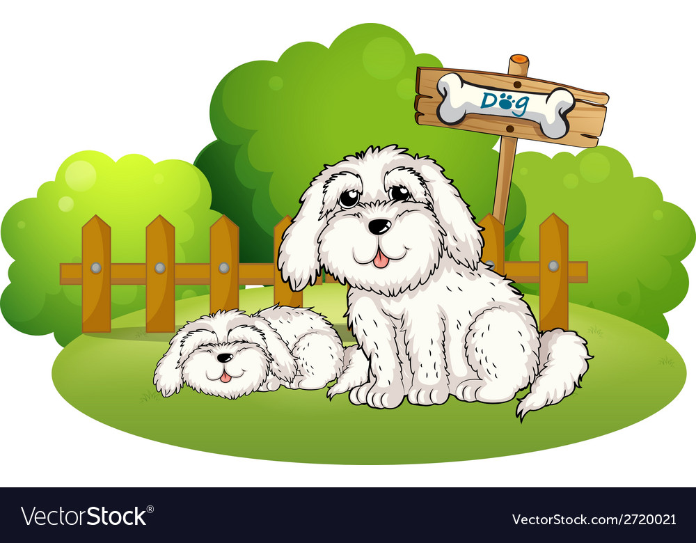 A backyard with two cute dogs vector | Price: 1 Credit (USD $1)