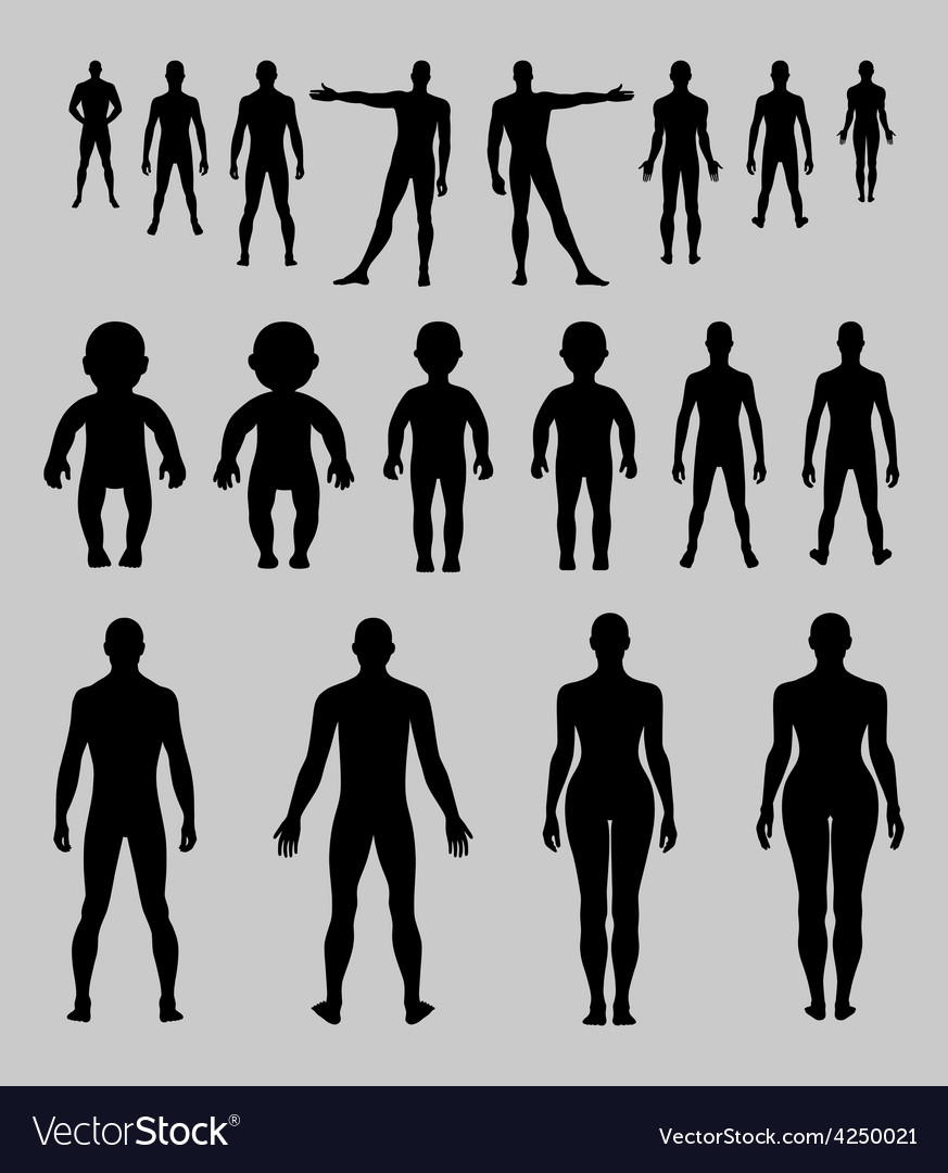 Full length front back human silhouette set vector | Price: 1 Credit (USD $1)