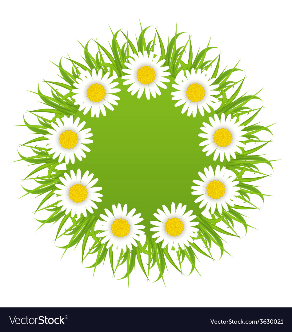 Spring freshness round card with grass and vector | Price: 1 Credit (USD $1)