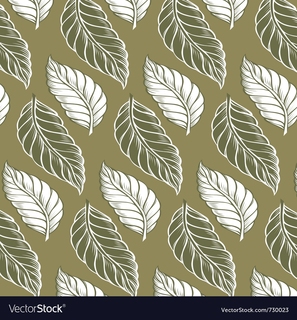 Cacao leaves background pattern vector | Price: 1 Credit (USD $1)