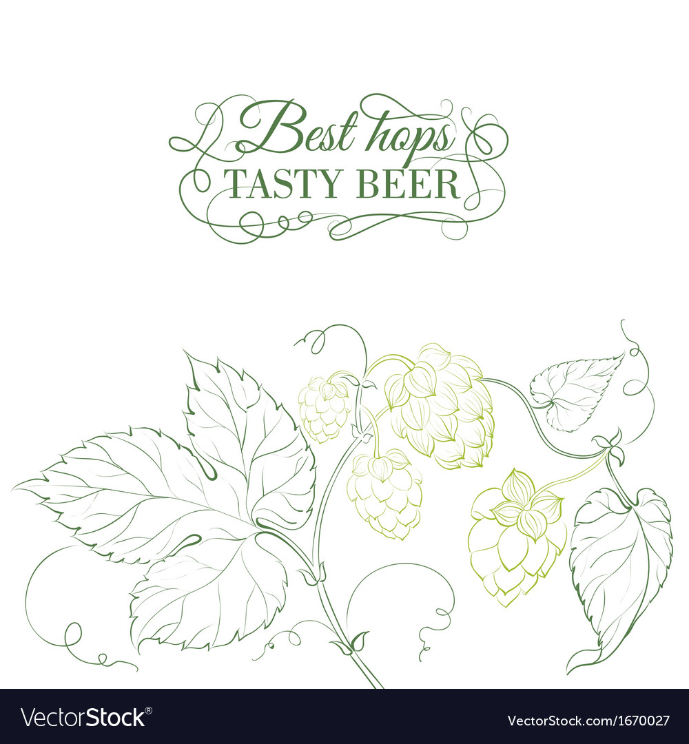 Hop and tasty beer sign over white vector | Price: 1 Credit (USD $1)