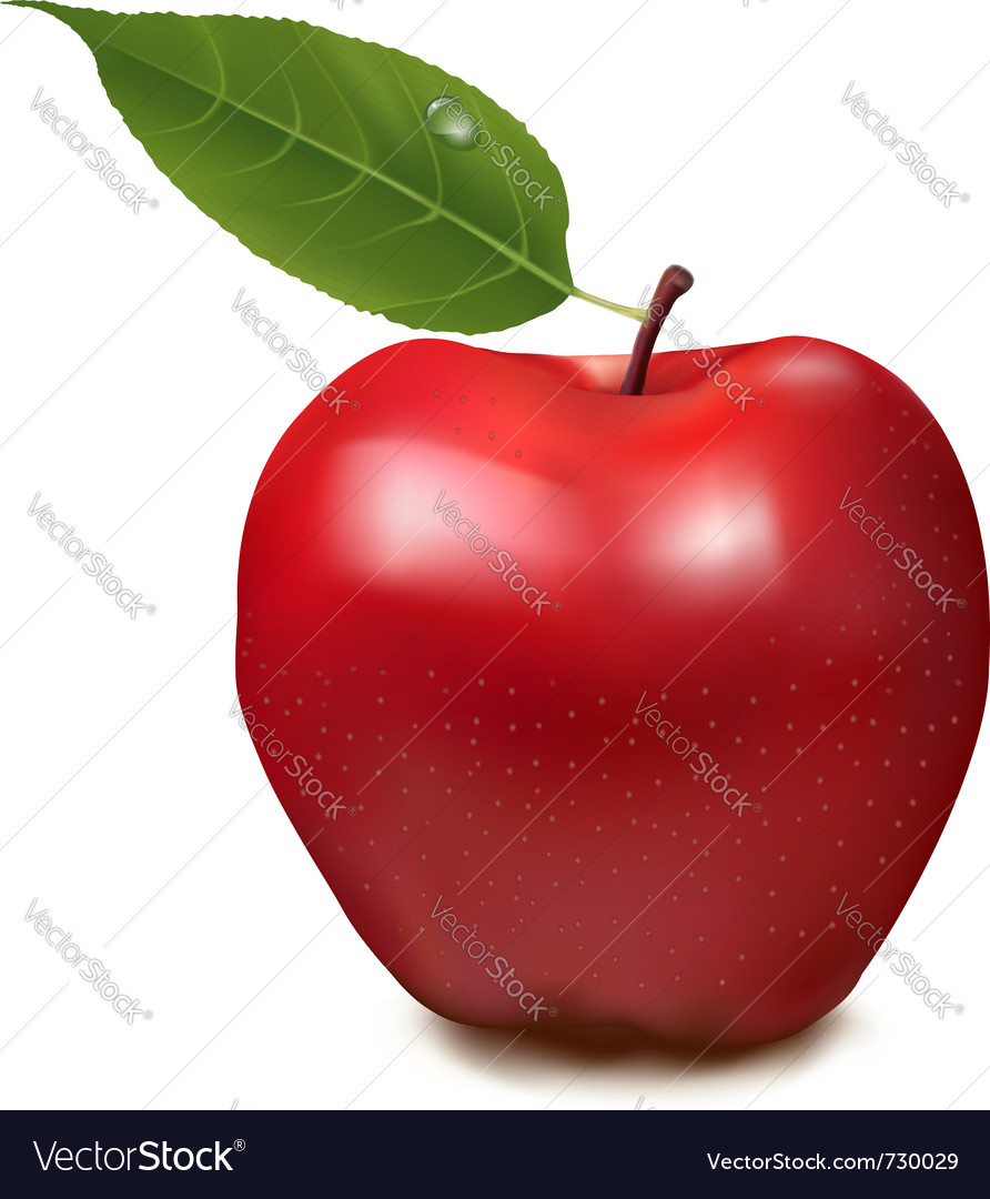Fresh red apple on white background vector | Price: 1 Credit (USD $1)