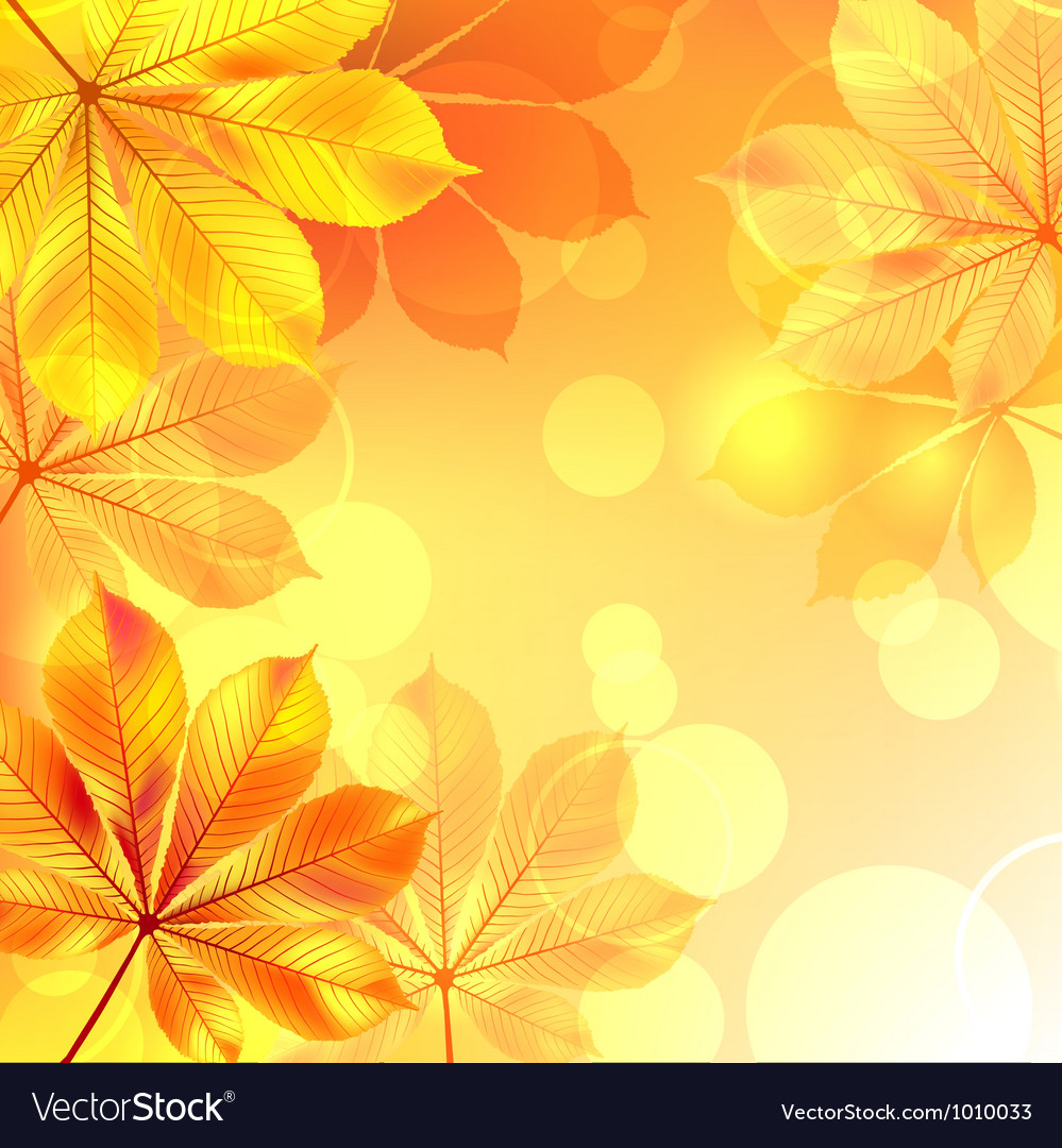 Autumn background with yellow leaves vector | Price: 1 Credit (USD $1)