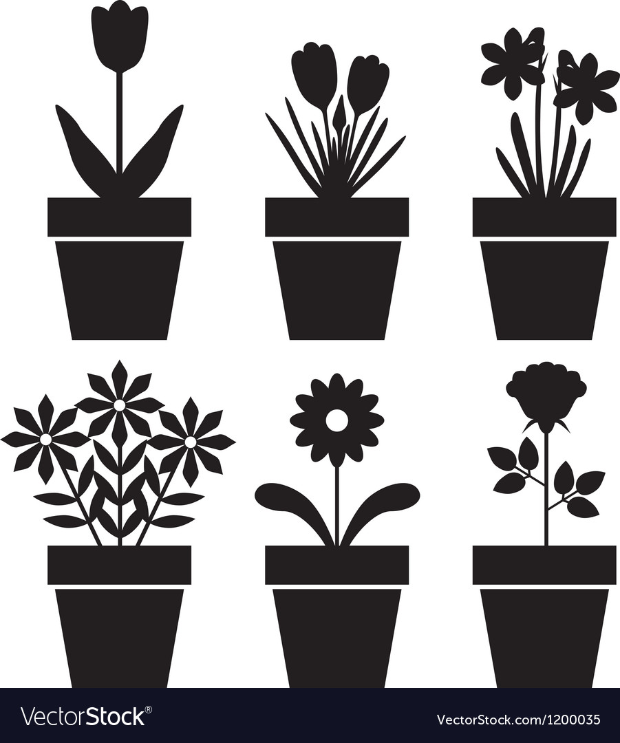 Pot plants set vector | Price: 1 Credit (USD $1)