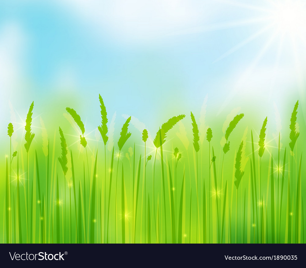 Sunny day vector | Price: 1 Credit (USD $1)