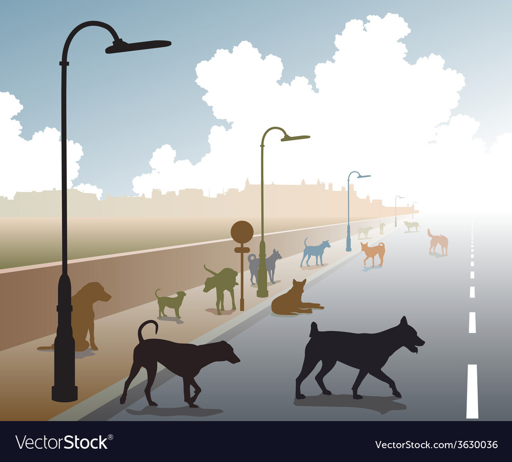 Dog road vector | Price: 1 Credit (USD $1)