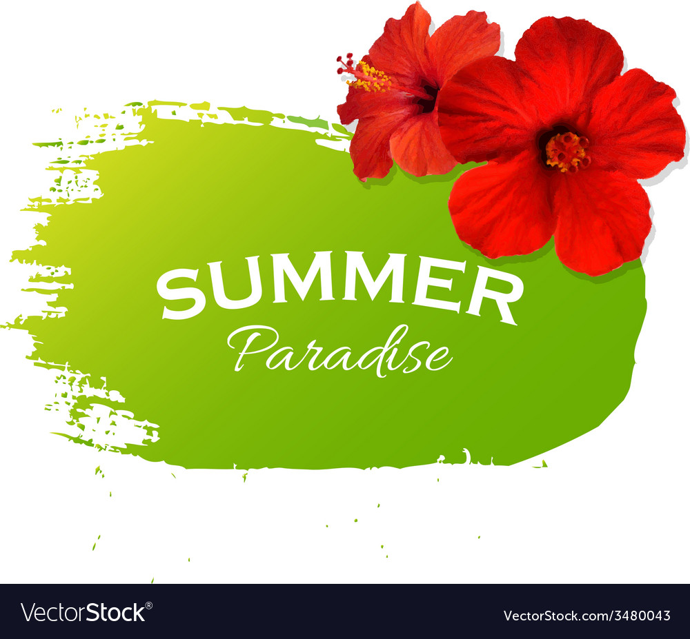 Summer flowers poster vector