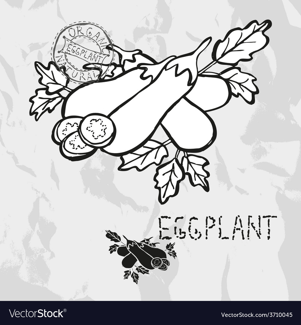 Hand drawn whole and sliced eggplants vector | Price: 1 Credit (USD $1)