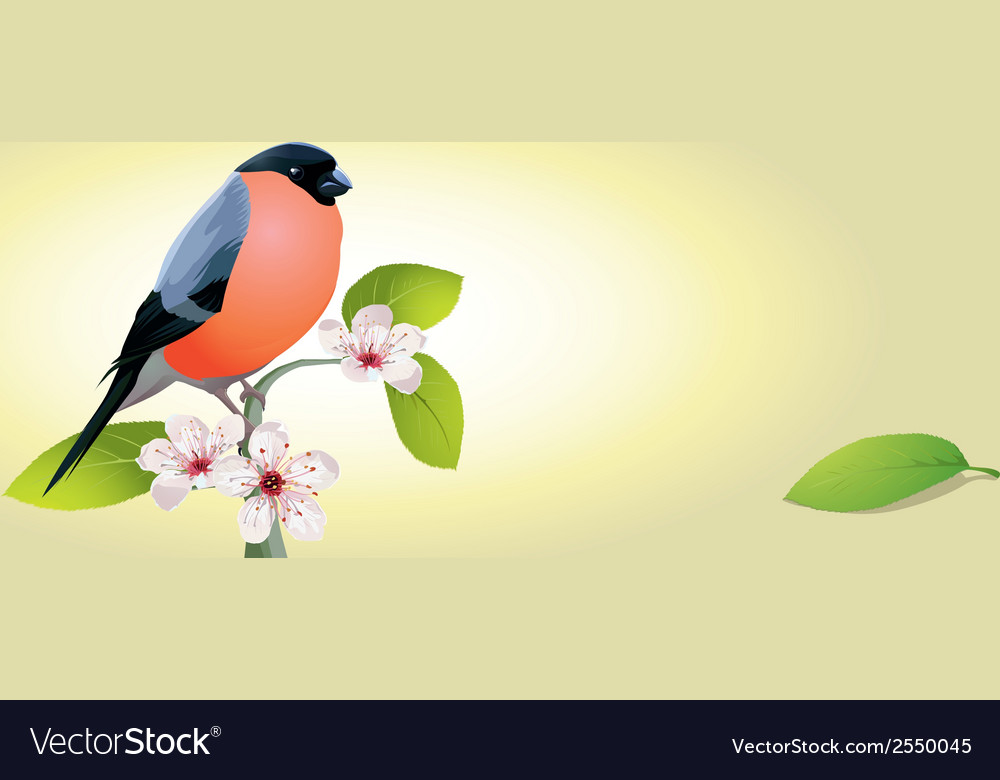 Vintage card with bird vector | Price: 1 Credit (USD $1)