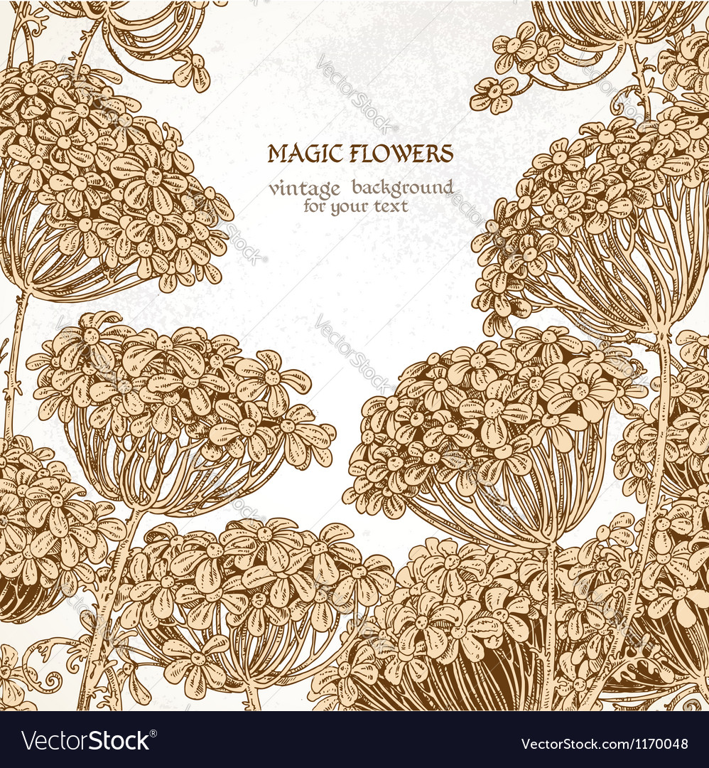 Beautiful wild flowers - umbrellas vintage vector | Price: 1 Credit (USD $1)