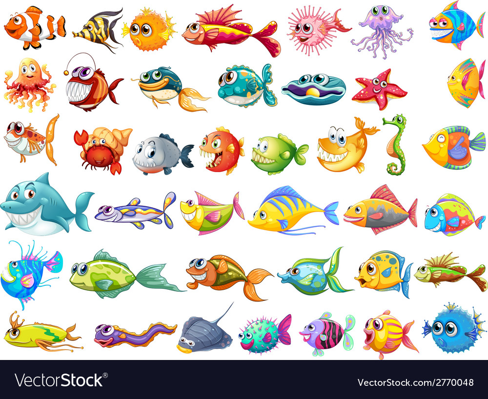 Fish collection vector | Price: 3 Credit (USD $3)