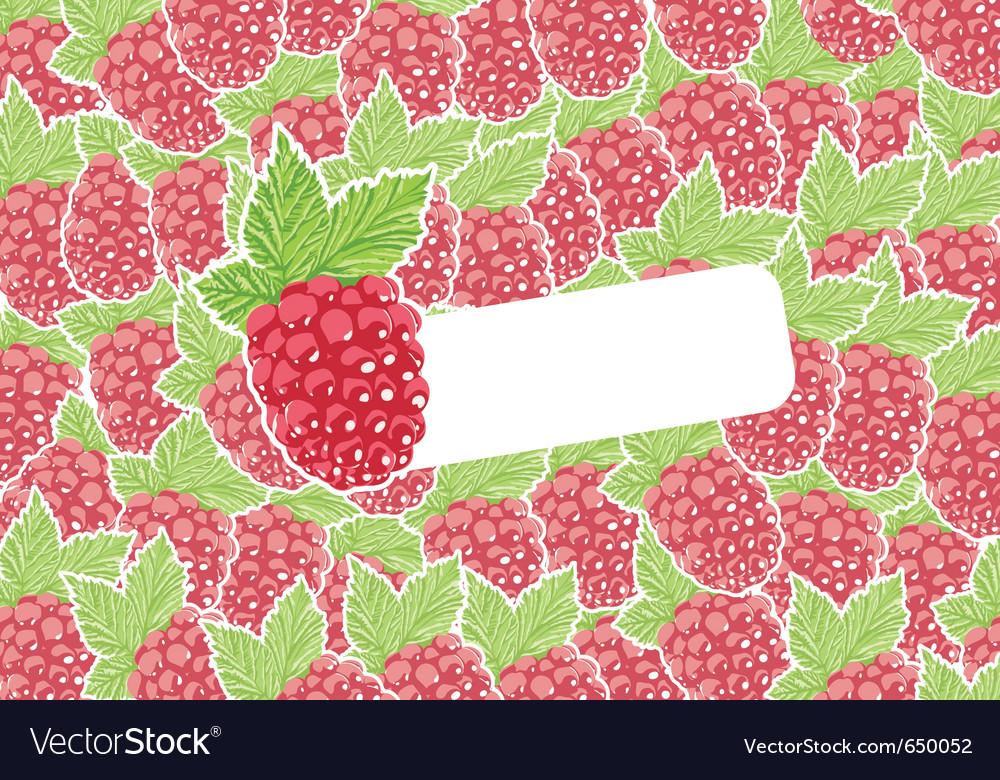 Berry vector | Price: 1 Credit (USD $1)