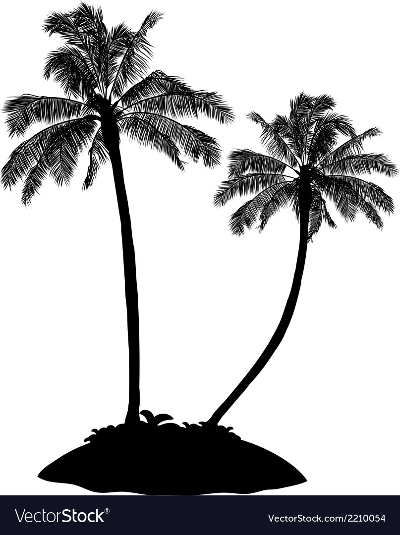 Palm tree silhouette on white vector | Price: 1 Credit (USD $1)