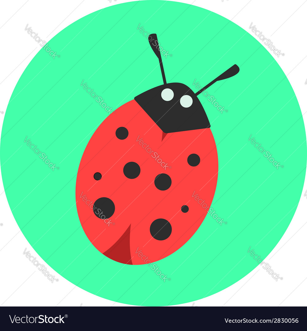 Ladybug on a green background vector | Price: 1 Credit (USD $1)