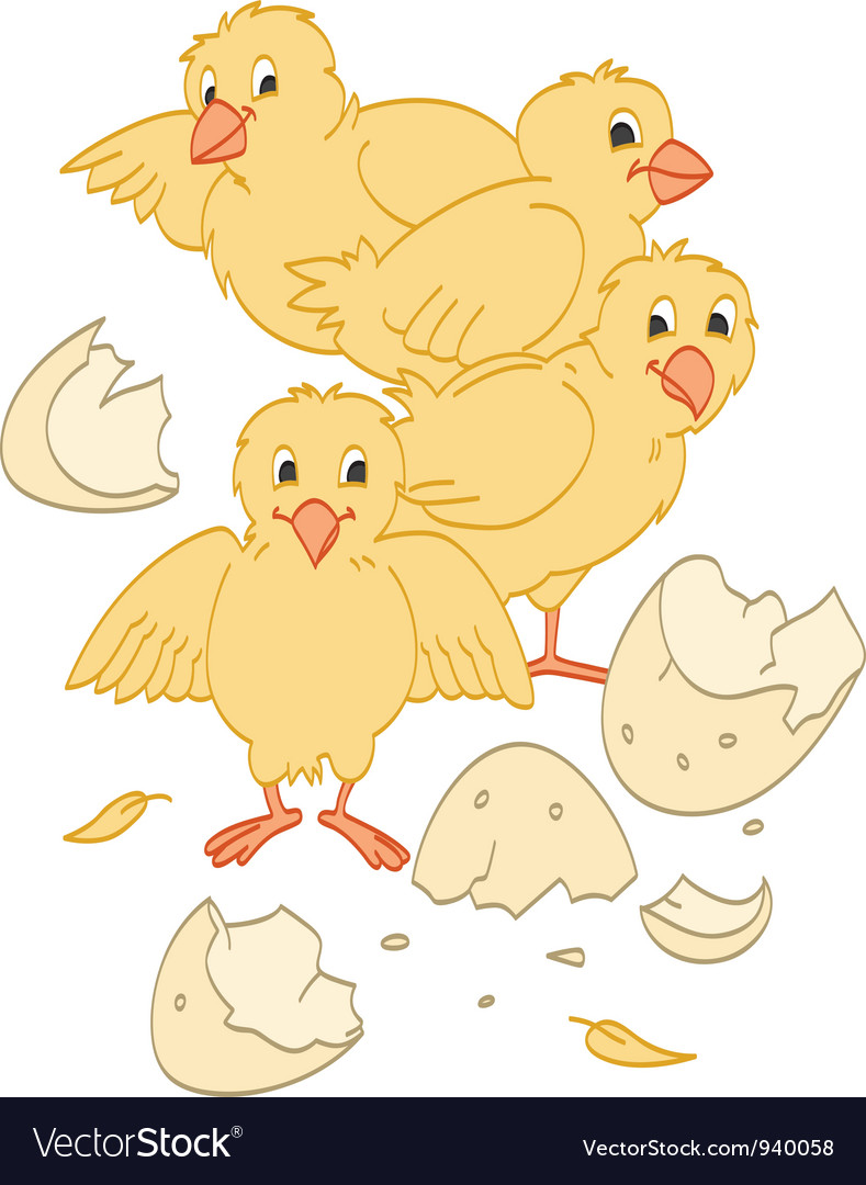 Hatched chicks vector | Price: 1 Credit (USD $1)