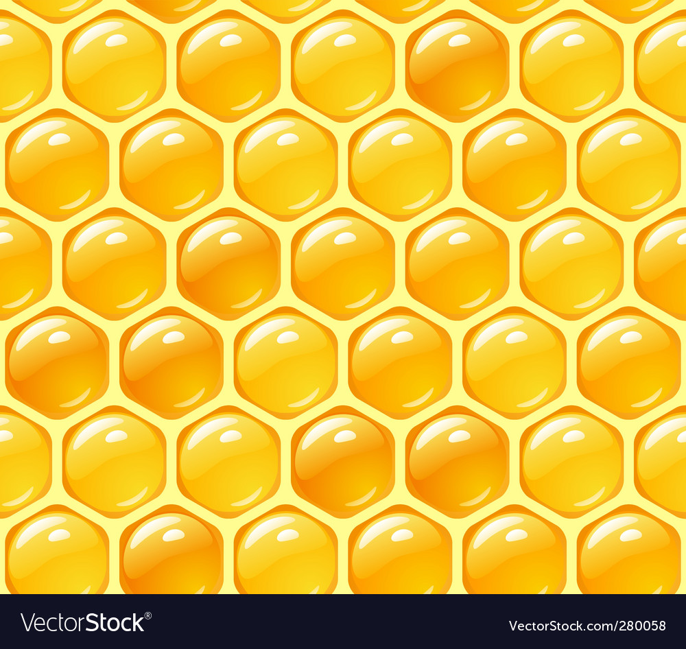 Honey background vector | Price: 1 Credit (USD $1)