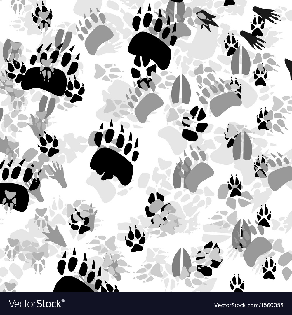 Traces of animals vector | Price: 1 Credit (USD $1)