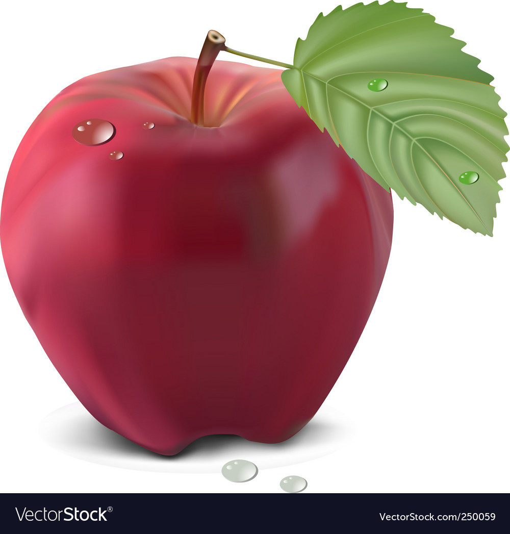 Apple and leaf vector   Price: 3 Credit (USD $3)