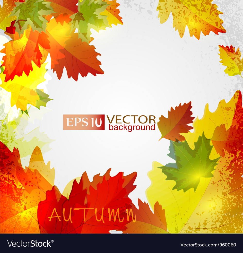 Autumn2 vs vector | Price: 1 Credit (USD $1)