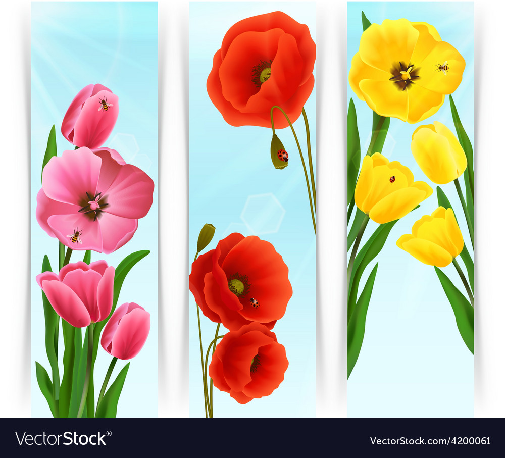 Floral banners vertical vector | Price: 1 Credit (USD $1)