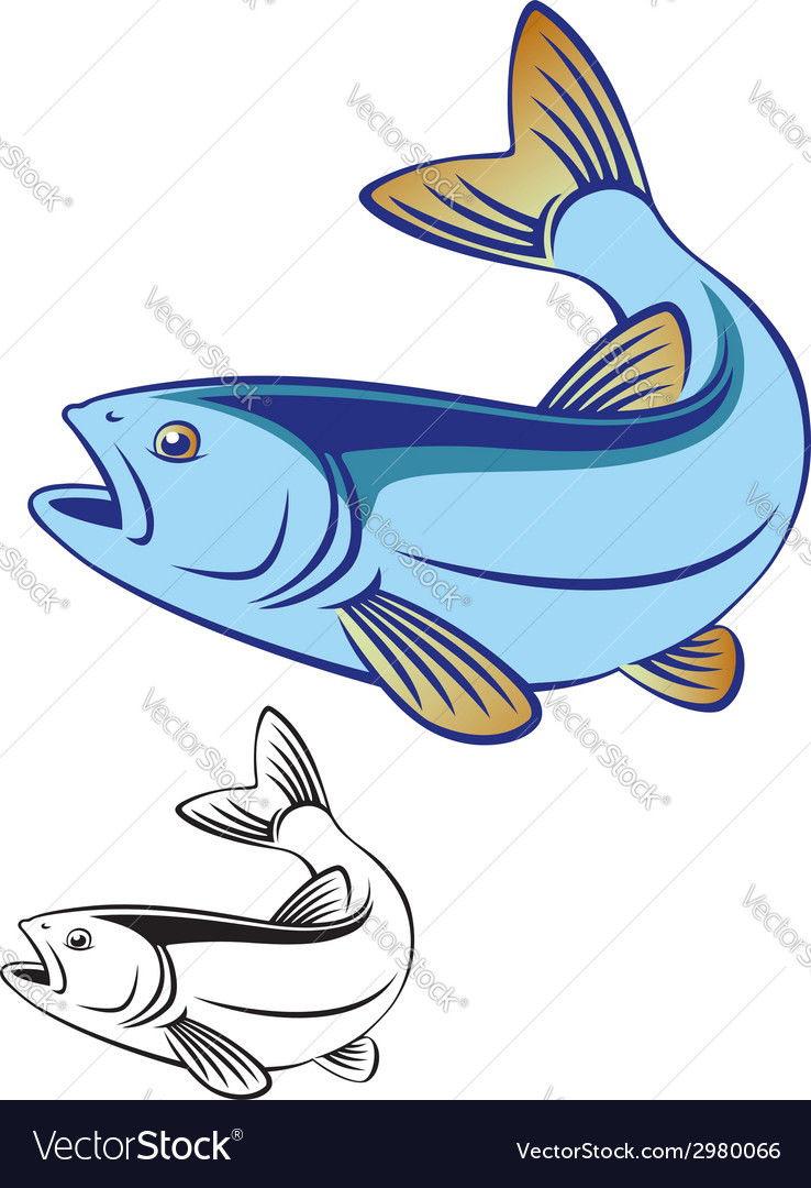 Fish chub vector | Price: 1 Credit (USD $1)