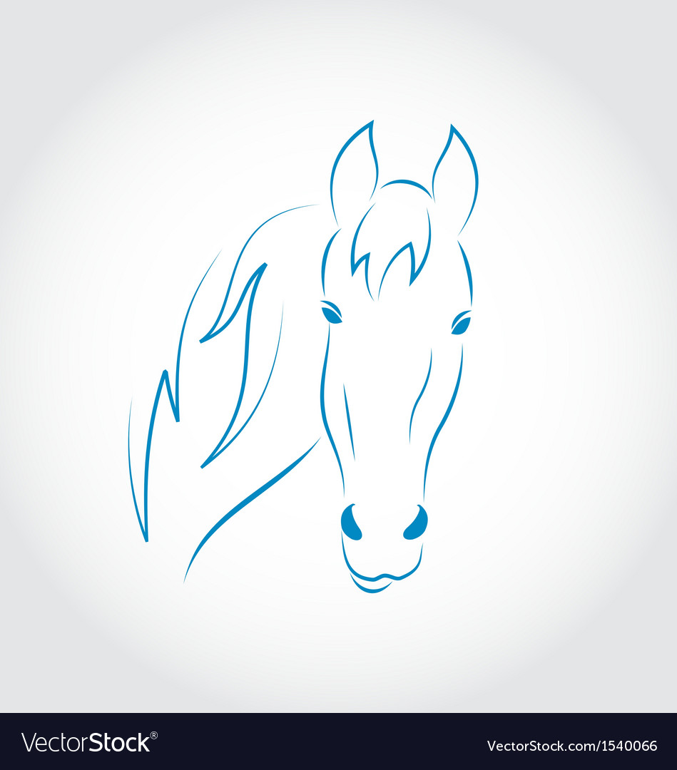 Hand drawn head horse vector | Price: 1 Credit (USD $1)