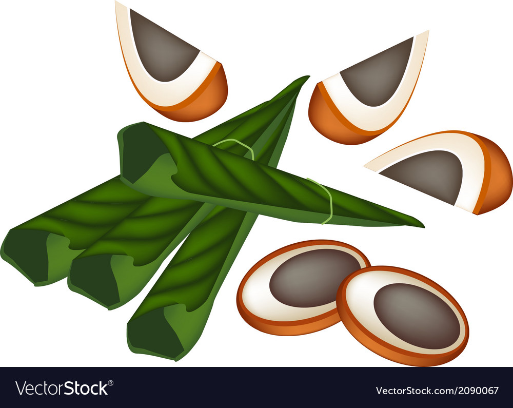 Ripe areca nuts and betel leaves vector | Price: 1 Credit (USD $1)