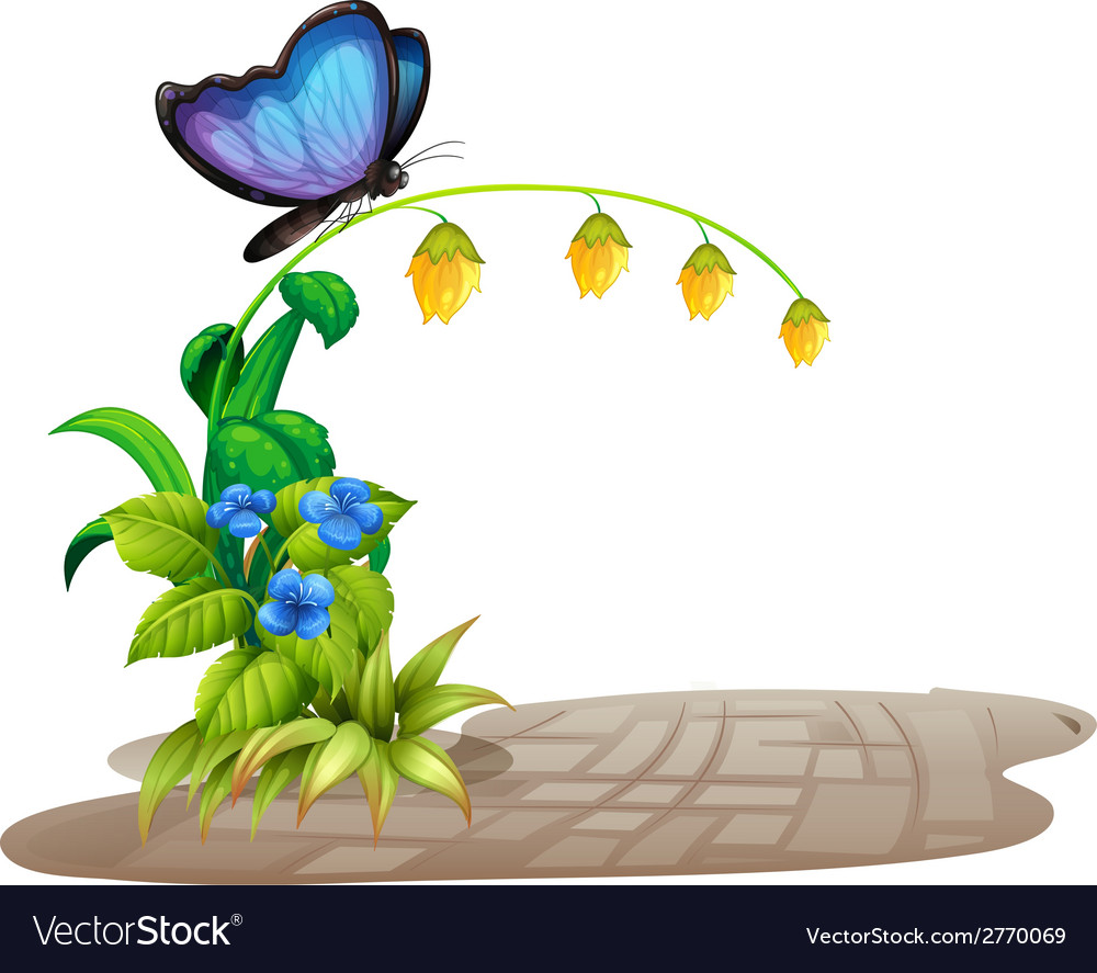 Butterfly and flower vector | Price: 1 Credit (USD $1)