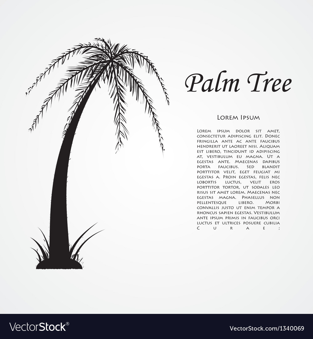 Silhouette of the palm tree vector | Price: 1 Credit (USD $1)