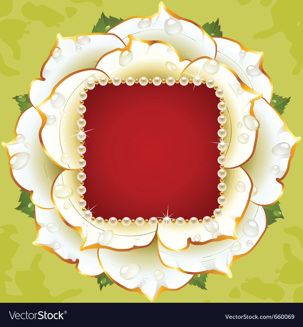 White rose circle frame vector | Price: 1 Credit (USD $1)