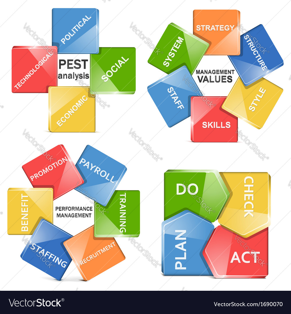 Management systems vector